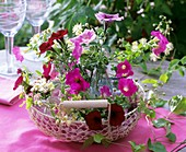 Basket of petunias and clematis