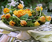 Moss wreath with tulips (variety: Orange Princess)