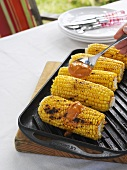 Spreading paprika butter on grilled corn on the cob