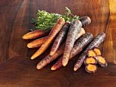 Carrots (variety: Purple Haze)