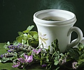 Herbal tea and fresh herbs