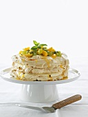 Layered meringue gateau with fruit