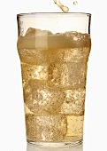A glass of cider with ice cubes