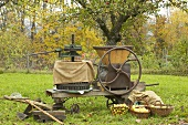 Historic cider press, cider apple harvest out of doors