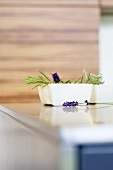 Lavender with flowers in dish