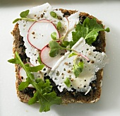 Feta cheese and radishes on black bread