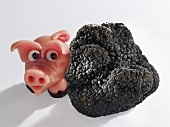 Marzipan pig and black truffle (Truffle pig)