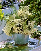 Elderflowers, barley and grasses in metal container