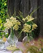 Elderflowers and grasses in glass vases