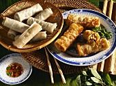 Vietnamese spring rolls and raw spring rolls