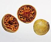 Bael-Früchte
