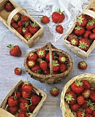 Fresh strawberries in baskets