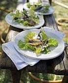 Roh marinierte und frittierte Sardinen mit Salat