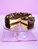 Sponge cake with chocolate cream and mocha icing