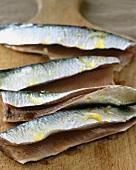 Raw sardines with oil
