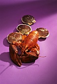 Lobster and scallops on purple background