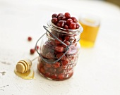 Cranberries in a preserving jar, honey