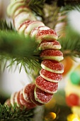 Garland of jelly rings on Christmas tree