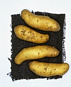 Potatoes, variety: La Ratte