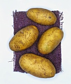 Potatoes, variety: Nicola