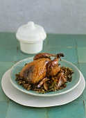 Quail on balsamic lentils
