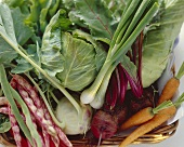 Fresh Vegetable Still Life