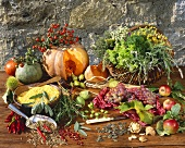 Autumn still life with herbs and spices
