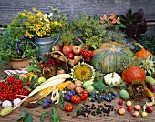 Autumn still life with herbs, fruit and vegetables