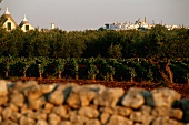 The white town of Locorotondo in the Itria Valley, Apulia, Italy