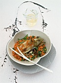 Chicory with duck ragout and red lentils