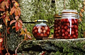 Cherries in preserving jars on a moss-covered wall