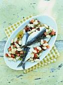 Bean salad with oily sardines