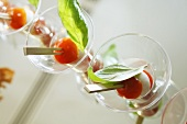 Tomatoes and mozzarella on rosemary skewers