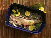 Char with sea salt, herbs, limes and lemons