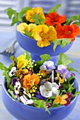 An edible flower salad with dandelions