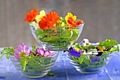 Salad bowls filled with edible flowers