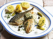 Grilled mackerel fillets with potatoes and tarragon butter