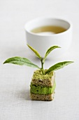 Green tea cake with chestnuts and a tea leaf