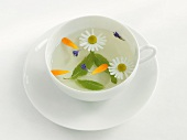 A cup of herbal tea with camomile, marigold, hyssop and sage