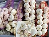 An arrangement of garlic cloves and plaits