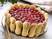 Raspberry cake with sponge fingers