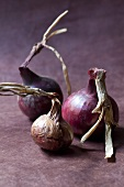 Three red onions