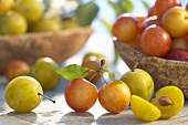Mirabelles in and in front of wooden bowls