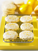 Biscuits with lemon icing on cake rack