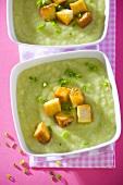 Cream of pea soup with fried tofu