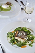 Sea bass with wild herbs and chilli oil