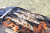 Steckerlfische (skewered fish) on barbecue