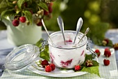 Raspberry yoghurt in preserving jar with spoons in garden