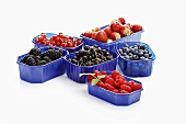 Six different types of berries in plastic containers
