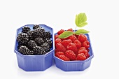 Blackberries and raspberries in plastic containers